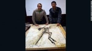 150717011229-zhenyuanlong-exlarge-1691