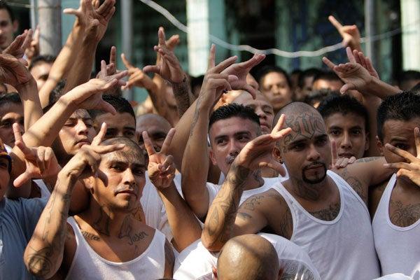 El Salvador Revela que pandillas MS y 18 planean unirse y formar la Mara 503-