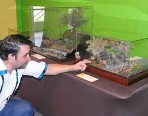 Aquí muestra los dioramas de un huerto de olivos y de la casa de Frodo Baggins (de la película El Señor de los Anillos).